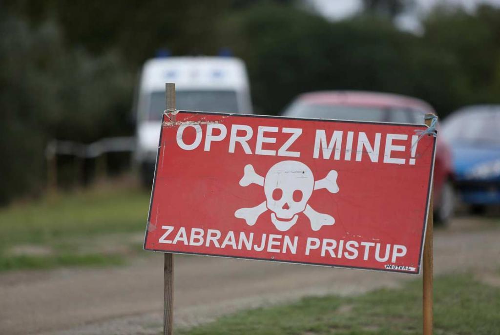 minska polja
